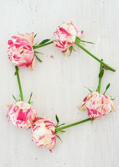 .fresh blooms and  petals X ღɱɧღ || Marshalls Abroad: Spring is Blooming