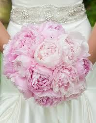 Image result for peonies