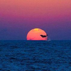 Lietotāja Beautiful Amazing World attēls.