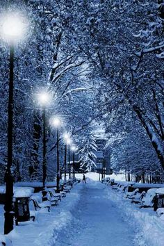Magical Winter Evening <3