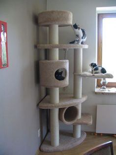 Diy Cat Tower Plans How To Build adorable cat tower plans furry friend Source: website aha perfect theyre constantly Source: website . Cat Tower Plans, Diy Cat Tower, Cat Climber, Cat Gym, Cat Tree House, House For Cats, Cat Towers, Cat Playground, Playground Design
