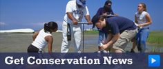 Together We Can Make  a Difference -Fort McHenry -National Aquarium - Conservation News Signup