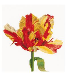 Thea Gouverneur Red/Yellow Parrot Tulip On Aida Counted Cross Stitch Kit