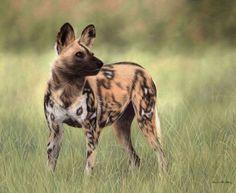 african wild dog sculptures | ... Wild Dog Painting Painting - African Wild Dog Painting Fine Art Print