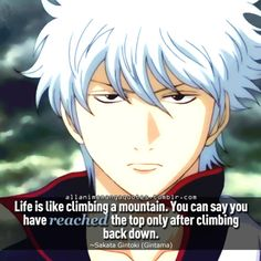 Life is like climbing a mountain. You can say you have reached the top only after climbing back down. ~Sakata Gintoki (Gintama)