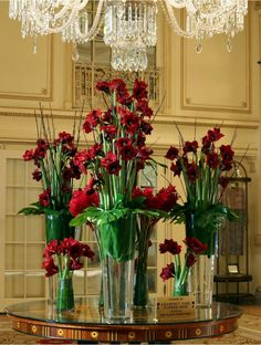 Extravagant red blooms embellish the main entrance of The Plaza Hotel's main lobby. Deep red hues of Royal Velvet Amaryllis and Ginger flowers beautify the luxurious setting.