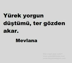 Mevlana The Words, Unique Words, Cool Words, Good Sentences, Words Worth, Meaningful Words, Wise Quotes, Happy Thoughts, Islamic Quotes