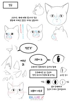 Marvelous Learn To Draw Manga Ideas. Exquisite Learn To Draw Manga Ideas. Animal Sketches, Animal Drawings, Art Sketches, Drawing Techniques, Drawing Tips, Drawing Reference, Moe Manga, Moe Anime, Cat Drawing Tutorial