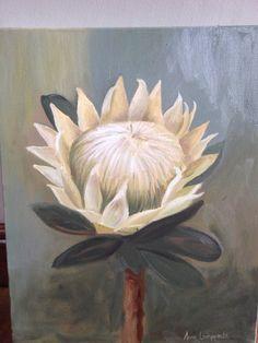 White Protea by Anna Lamprecht