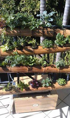 Bamboo Balcony Vertical Garden - Vertical Gardening Systems