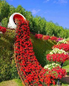 Cascada flori curgatoare