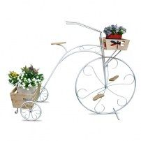 triciclo Plants, Bicycles, Plant, Planets