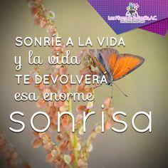 #Frases #Inspiración #Sonrisa #Vida