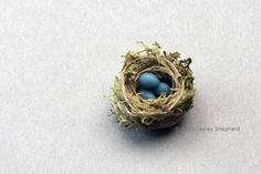 Tiny Bird's Nest Ornaments From Thread and Moss: Make a Miniature Birds Nest for a Dolls House Scene or Spring Display