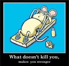 What doesn't kill you, makes you stronger. Ciò che non ti uccide, ti fortifica. Condivido questo pensiero, qui espresso tramite l'immagine di un topino #resiliente! :-) #psicologia #resilienza