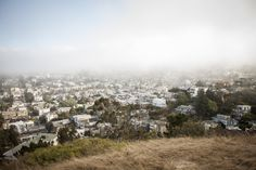 watching Karl the Fog roll into San Francisco - PARKS AND RECREATION - Thread and Bones