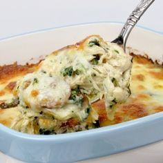 Chicken Alfredo Casserole - Keto and Low Carb A casserole of chicken, mushrooms and spinach swimming in creamy Alfredo sauce and baked with gooey cheese on top! Chicken Florentine Casserole, Chicken Alfredo Casserole, Keto Casserole, Broccoli Casserole, Casserole Recipes, Pollo Alfredo, Salsa Alfredo, Alfredo Sauce, Low Carb Keto