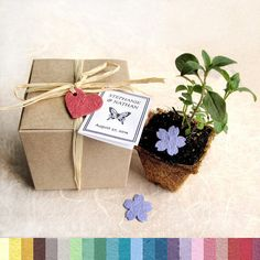 This is a neat idea.   160 Seed Wedding Favor Plantable Pots and Paper  by recycledideas, $457.60