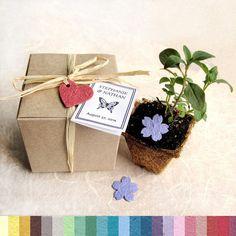 10 Wedding Favor Plantable Pots et papier - Kit de semences de fleurs