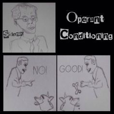 We all remember B. Skinner who discovered operant conditioning. He believed that behaviors were influenced by what happens after a res. Social Work Theories, Social Work Exam, Operant Conditioning, Behavioral Psychology, Applied Behavior Analysis, Positive Reinforcement, Conditioner, How To Apply, Shit Happens
