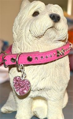 Two Cowgirls Jewelry - Dog Collars - Odessa, TX