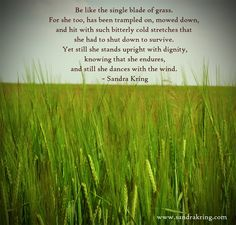Be like the single blade of grass. For she too, has been trampled on, mowed down, and hit with such bitterly cold stretches that she had to shut down to survive. Yet still she stands upright and with dignity, knowing that she endures, and she still dances with the wind. -Sandra King #quote