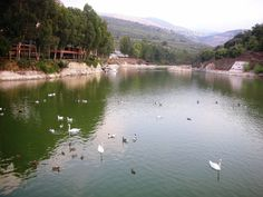 Zghorta, lake Bnashii- Lebanon