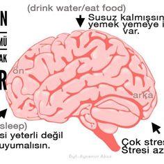 Başımızın ağrayan bölümü bize ne anlatmak istiyor? -------------------------------- This is how to make sense of headache.  #beslenme #diyetisyen #sağlık #saglikliyasam  #gercekdiyetisyen #başağrısı #zayiflama #nutrition #nutritionist #healthyliving #loseweight #headache #healthyeating #healthychoices #healthylifestyle #form #fit #dytaysenurakoz #aysenurakoz