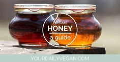 A practical guide to (finally) put an end to the question about whether or not a bee is an animal plus vegan alternatives to bee products.