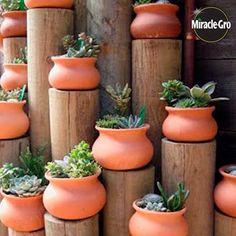 Wood & pots