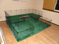 C&C cage idea