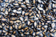 Melounová jadérka jsou výborná na pročistení ledvin, je třeba ale umět je připravit