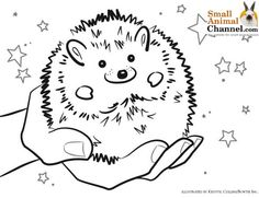 hedgehog drawing template - Google Search
