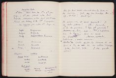 pages from Virginia Woolf's notebook.