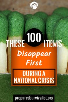When disaster strikes you have to be prepared. This is why we are always on the lookout for survival essentials that we can store in case SHTF. But what items do we need to store exactly? these 100 items are vital to any survival kit, bug out bag or emerg Survival Quotes, Survival Food, Outdoor Survival, Survival Prepping, Survival Skills, Survival Hacks, Survival Weapons, Outdoor Camping, Survival Store
