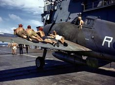British sailors relaxing on the wing of a Fleet Air Arm Hellcat.
