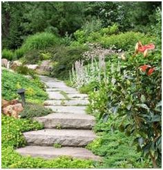 744 Free Do It Yourself Landscape Project Plans – Build your own walkways, garden paths, steps, planters, outdoor furniture, fences, gates, decks, patios, pergolas and more with the help of these free plans and step-by-step guides.