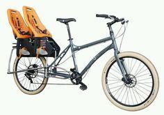 a8dfbc4628f Para gêmeos Bike With Sidecar, Cargo Bike, Mtb, Pea Pods, Kids Seating