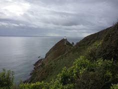 Nugget Point Lighthouse, Nieuw-Zeeland #newzealand #roadtrip