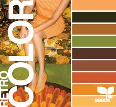 Retro Colors 1960's 1970's avocado, harvest gold, burnt orange....can we play up our avocado green bathtub?
