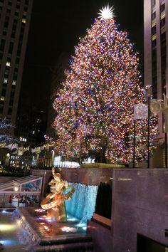 Der Rockefeller Center-Weihnachtsbaum in New York City – New York City New York Christmas Tree, Christmas Time Is Here, Christmas Mood, Rockefeller Center, Manhattan Times Square, Lower Manhattan, New York City, Holiday Dates, Holiday Movie