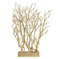Gold Branch Tree In Pot   Sequoia Dining   Dining Room   Inspiration   Z Gallerie