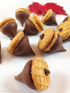 Peanut Butter & Chocolate Acorns. Perfect little fun bite for kid parties and harvest time. Great DIY kids' craft. Super cute. Fun to make, fun to eat.