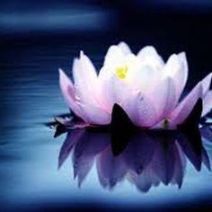 * Relaxing  Music - Inner Balance Meditation *