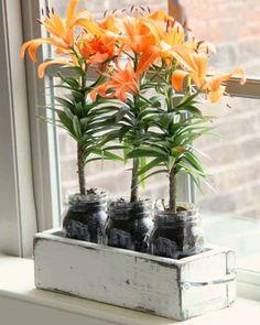 Para àquelas que adoram flores, que tal colocar as favoritas dela em um arranjo fofo e personalizado?!