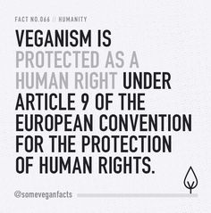 Veganism is protected as a human right under Article 9 of the European Convention for the Protection of Human Rights. Source // https://www.vegansociety.com/about-us/key-facts