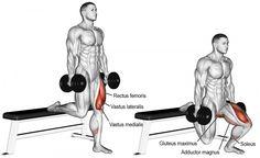 Comment effectuer l'exercice fentes sur banc avec haltères en musculation ?
