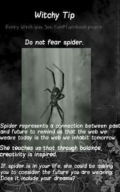 Witchy tip spiders.