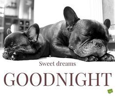 sweet-good-night-quote