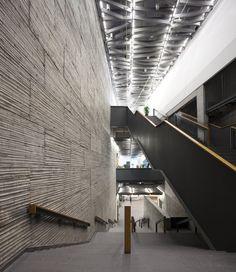 Galería de La obra de Wang Shu en Fotografías por Clemente Guillaume - 65